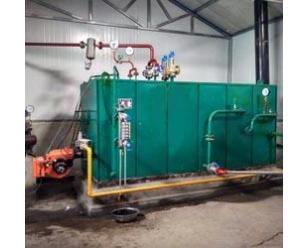燃气燃油蒸汽发生器三分钟出蒸汽 蒸发器