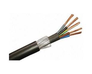 RVV22铠装电源线